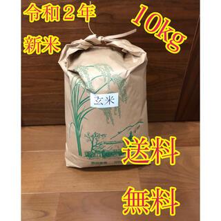 令和2年度産 新米 玄米ヒノヒカリ10kg(米/穀物)
