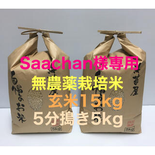 Saachan様専用 無農薬コシヒカリ玄米15kg、5分づき5kg 令和2年産(米/穀物)