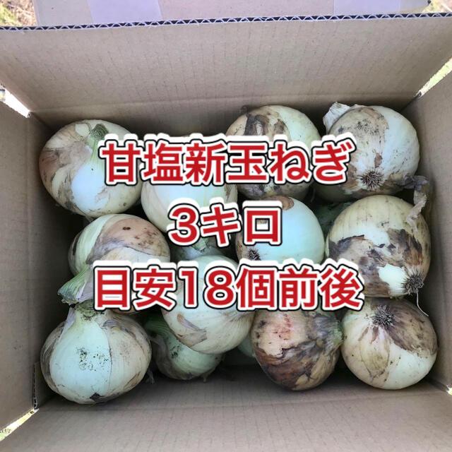 【鹿児島産】甘塩新玉ねぎ箱込み3キロ^_^ 食品/飲料/酒の食品(野菜)の商品写真