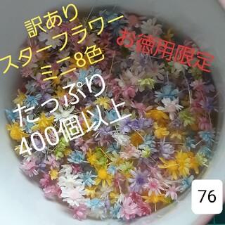 訳あり76スターフラワーミニ8色 400個以上(ドライフラワー)