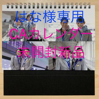 エーエヌエー(ゼンニッポンクウユ)(ANA(全日本空輸))の【非売品】ANA CAカレンダー2021年版(航空機)