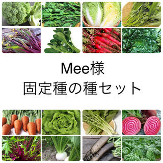Mee様 ★伝統野菜★固定種の種セット(野菜)