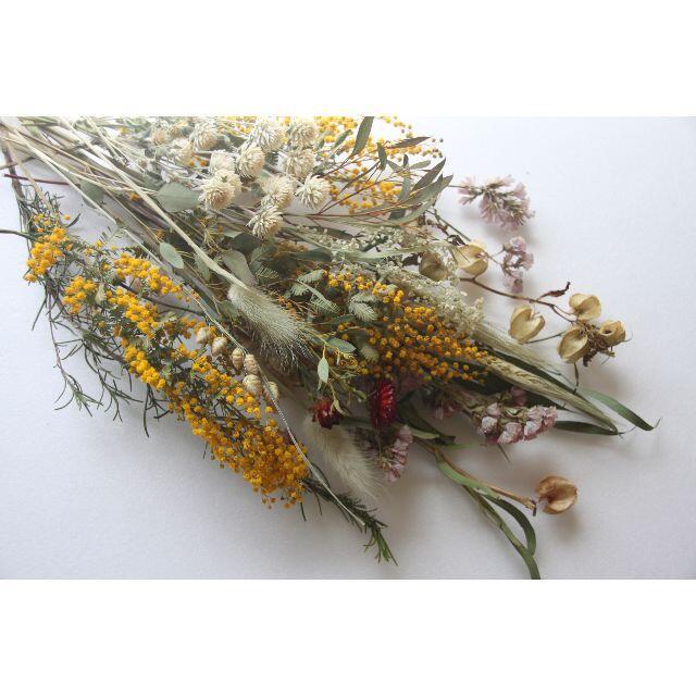 スワッグ花材(F) ミモザ.ユーカリ.グラス系セット ハンドメイドのフラワー/ガーデン(ドライフラワー)の商品写真