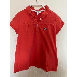 ラコステ(LACOSTE)のLACOSTE ラコステ ガールズ ポロシャツ ピンク(Tシャツ/カットソー)