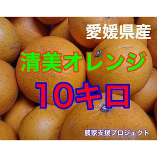 清美オレンジ10キロ (フルーツ)