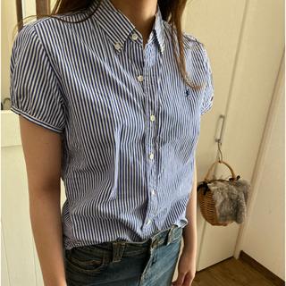 ジムフレックス(GYMPHLEX)のジムフレックスのストライプシャツ(シャツ/ブラウス(半袖/袖なし))
