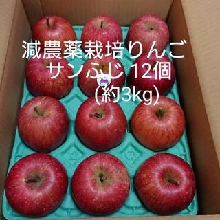 減農薬栽培りんご サンふじ12個(約3kg)(フルーツ)