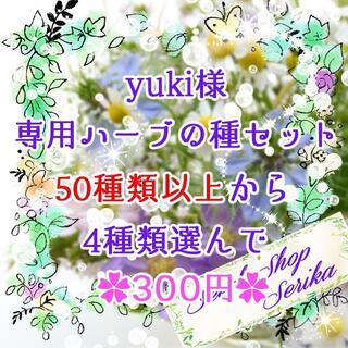yuki様専用 ハーブの種セット 家庭菜園 野菜(その他)