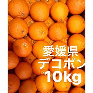 愛媛県 デコポン 10kg(フルーツ)