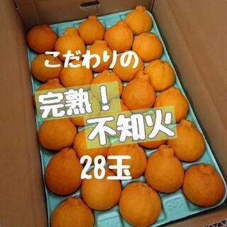 完熟!不知火 Sサイズ秀品 28玉(フルーツ)