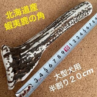 鹿の角 犬のおもちゃ 北海道産              大型犬用半割り20cm(犬)