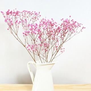 イケア(IKEA)のピンク色かすみ草&ピッチャー(ドライフラワー)