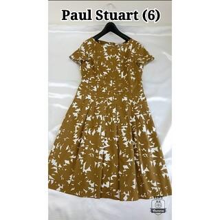 ポールスチュアート(Paul Stuart)の美品♪11号  ポールスチュアート コットンワンピース(ひざ丈ワンピース)
