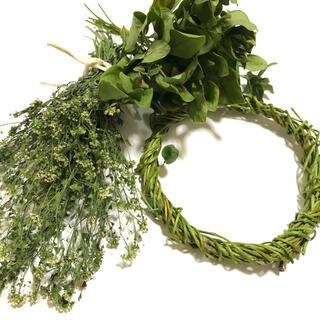 グリーン素材 3点セット ナチュラル リース スワッグ  花材 L(ドライフラワー)