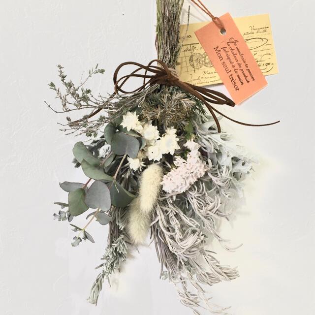 香り立つ無農薬 ユーカリ ダースティー ホワイトラベンダーリーフスワッグ ハンドメイドのフラワー/ガーデン(ドライフラワー)の商品写真