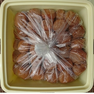 ともっちさま♪【容器無し】訳あり★完熟白干し梅 1.8kg入り(漬物)