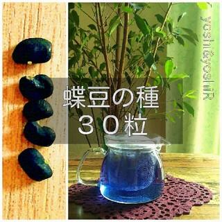 【2020年採取】 蝶豆(バタフライピー、クリトリア)の種 30粒(補償用に多め(その他)