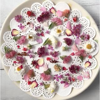ドライフラワー 花材 素材 赤ピンク白ワインレッド系*小花アソート(各種パーツ)