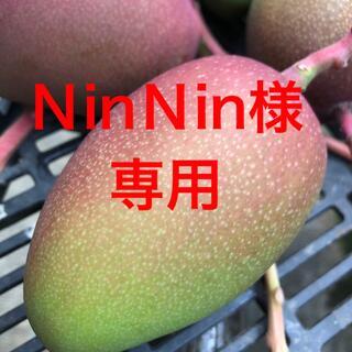 NinNin様 専用ページ(フルーツ)