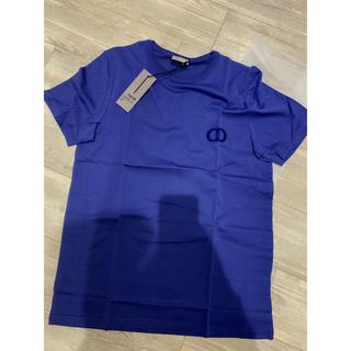 ディオール(Dior)のDior Icon Tshirt tシャツ(Tシャツ(半袖/袖なし))