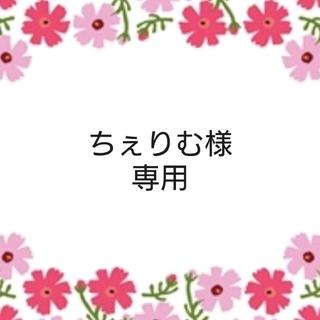 ちぇりむ様 専用 (宛名シール)(宛名シール)