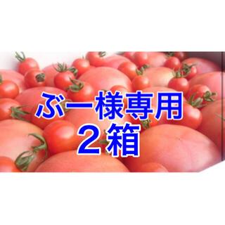ぶー様専用(野菜)