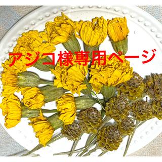 ⑭ドライフラワー花材(ドライフラワー)