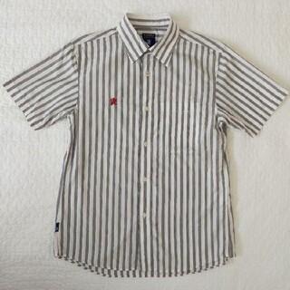 アールニューボールド(R.NEWBOLD)のR.NEWBORLD ストライプシャツ(半袖)(シャツ)