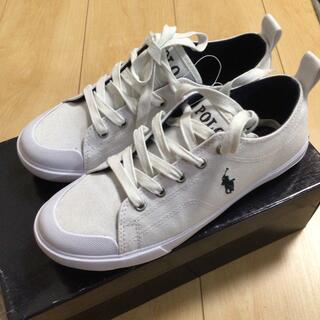 POLO RALPH LAUREN - ラルフローレン シューズ 靴 23.5センチ 4 1/2インチ 新品未使用