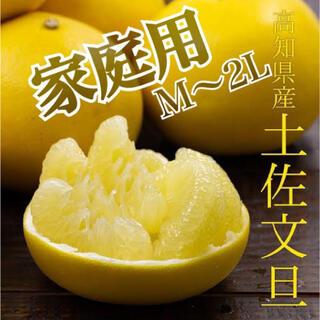 家庭用小玉【土佐文旦】M〜2L混合サイズ  箱含め約11kg 26玉前後(フルーツ)