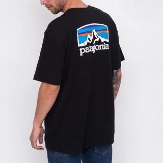 patagonia - patagonia  パタゴニア Tシャツ 半袖 Lサイズ メンズ レディース