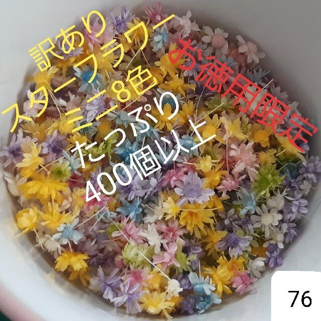 訳あり76スターフラワーミニ8色 400個以上 ハンドメイドのフラワー/ガーデン(ドライフラワー)の商品写真