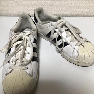 アディダス(adidas)のadidas アディダス スニーカー スーパースター 23.5cm(スニーカー)