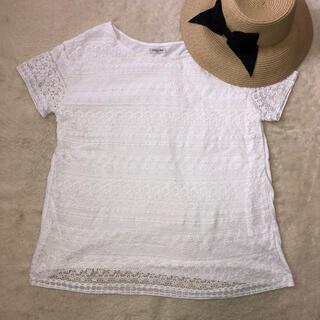 サマンサモスモス(SM2)のsm2 トップス(シャツ/ブラウス(半袖/袖なし))
