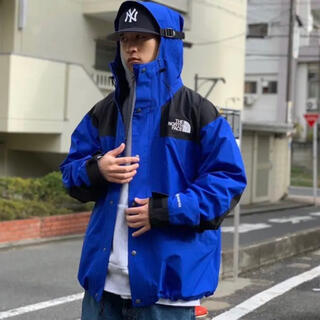 ザノースフェイス(THE NORTH FACE)のThe North Face 1990 MOUNTAIN JACKET GTX(マウンテンパーカー)