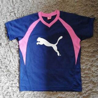プーマ(PUMA)のPUMA プラシャツ 140(Tシャツ/カットソー)