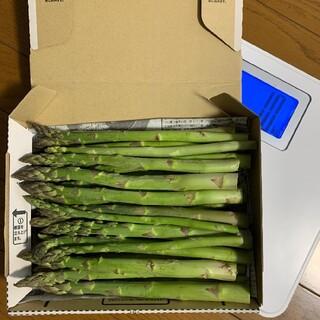 農家直送 グリーンアスパラガス    B品 太アスパラ 1kg(野菜)