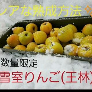 数量限定✨雪室りんご  王林家庭用 ミニサイズ5kg(フルーツ)