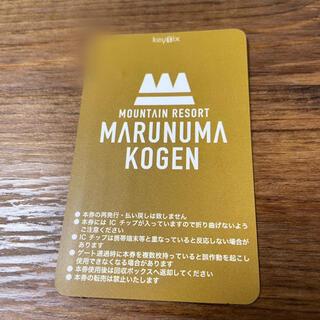 丸沼高原スキー場 リフト券(ウィンタースポーツ)