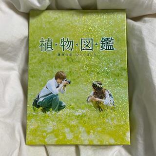 サンダイメジェイソウルブラザーズ(三代目 J Soul Brothers)の植物図鑑 DVD(日本映画)