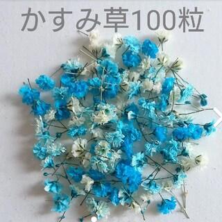 No.8 ドライフラワー かすみ草 100粒 ブルー ホワイト(ドライフラワー)
