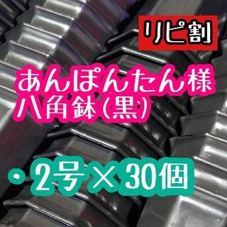 あんぽんたん様 八角鉢(その他)