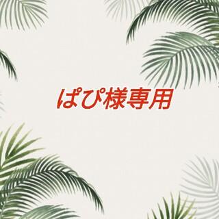 ぱぴ様専用(その他)