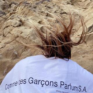 COMME des GARCONS - 国内未発売!Stussy コムデギャルソンLAGUNA BEACH Tee XL