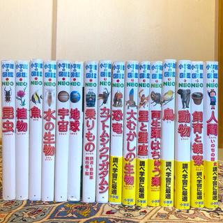 小学館 - 小学館の図鑑・NEO