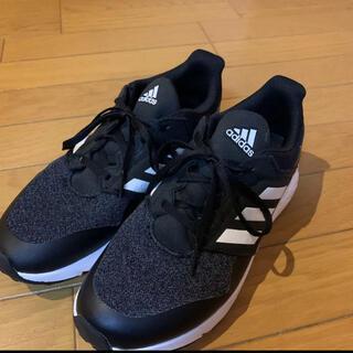 adidas - adidas スニーカー25cm