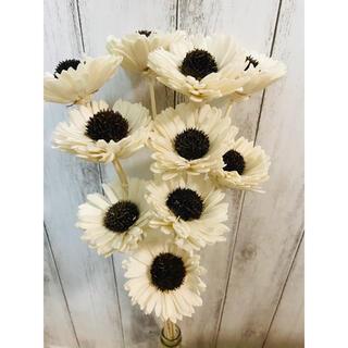 ドライフラワー インテリア 菊ソーラーフラワー10本 ハンドメイド花材(ドライフラワー)