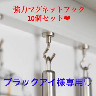 ブラックアイ様専用 ❤︎強力マグネットフック シルバー 10個セット(その他)