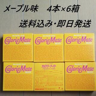 大塚製薬 - メープル 4本入り6箱 カロリーメイト ブロック