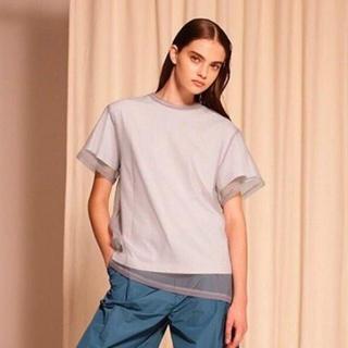 LE CIEL BLEU - ルシェルブルーオーガンザオーバーレイTシャツ完売オーガンジーシースルー